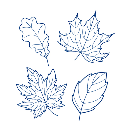 Collection of leaves on a white background, linear autumn leaves set, hand-drawn leaves tree decoration art, EPS 8 Illustration