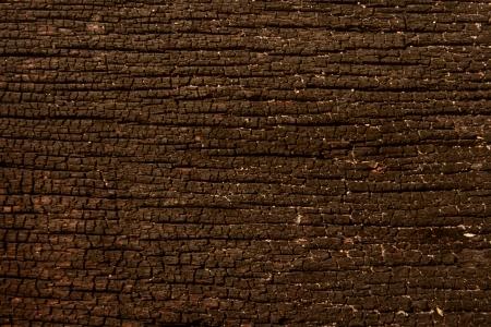 textura de madeira marrom Banco de Imagens