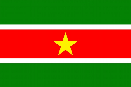 original and simple Suriname flag isolated vector in official colors and Proportion Correctly Vector