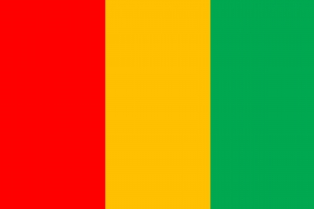original and simple guinea flag isolated vector in official colors and Proportion Correctly Vector
