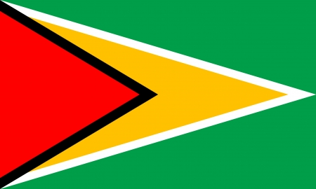 georgetown: original and simple Guyana flag isolated vector in official colors and Proportion Correctly