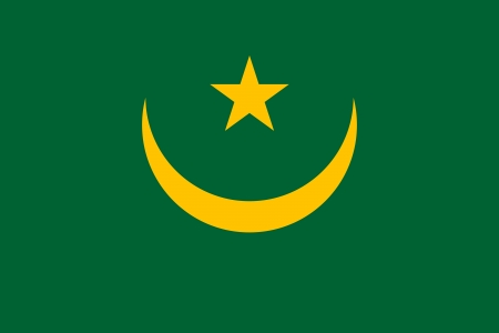 moresque: original and simple Mauritania flag isolated vector in official colors and Proportion Correctly Illustration