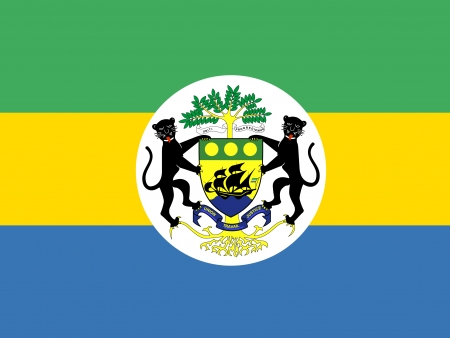 correctly: original and simple Gabon Presidential Standard flag isolated vector in official colors and Proportion Correctly