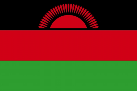 correctly: original and simple Malawi present flag isolated vector in official colors and Proportion Correctly Illustration
