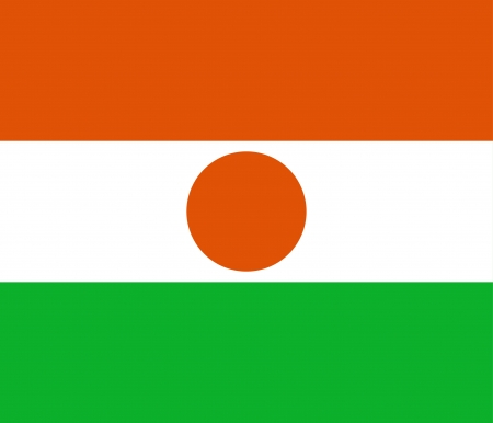 6 7: original and simple Republic of Niger flag isolated vector in official colors and Proportion Correctly  scale 6 7   Illustration