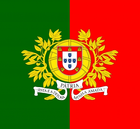correctly: original and simple Portugal Military flag isolated vector in official colors and Proportion Correctly