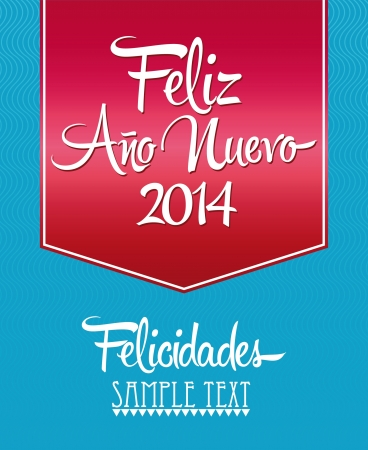 Feliz Ano Nuevo - spanish text - Happy New Year lettering Greeting Card Vector