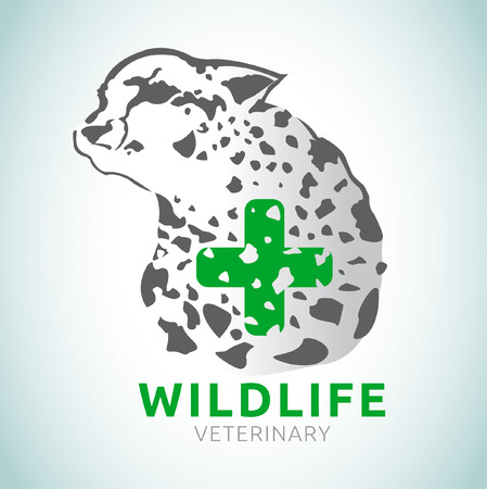 wildlife: wildlife veterinary illustration