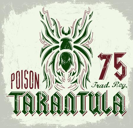 black widow: Tarantula vintage lettering design - t shirt print design - vector Illustration