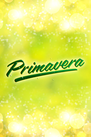 primavera: Primavera - Spring spanish text - Blurred spring background Stock Photo