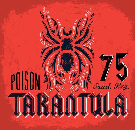 tarantula: Tarantula vintage lettering design - t shirt print design - vector Illustration