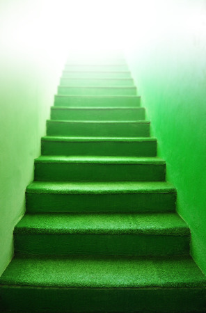ascent: Green stairs - indoor green carpet step
