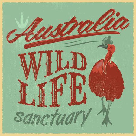 cassowary: Vintage T  Shirt design  Australian Wild Life vector print illustration
