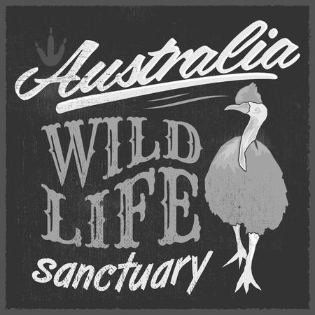 빈티지 T - 셔츠 디자인 - 호주 와일드 라이프 벡터 인쇄 그림 일러스트