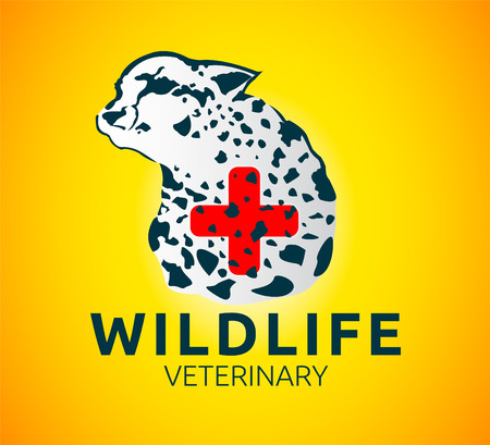 wildlife: Wildlife veterinary illustration Illustration