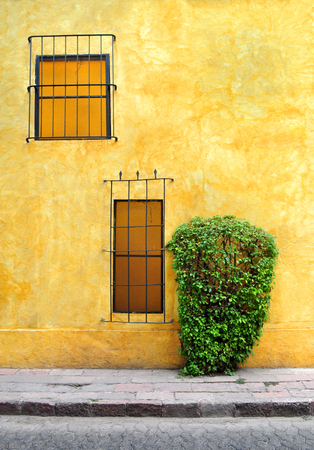 Colonial house with windows, colorful wall and a bush