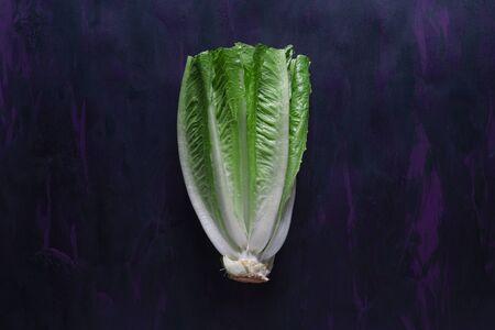 Lettuce Fresh Vegetable on Hand Painted Canvas 版權商用圖片