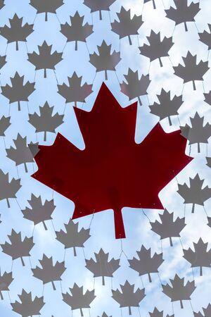 Decoratively Woven Symbol of Canada, vinyl Maple Leaf. 版權商用圖片