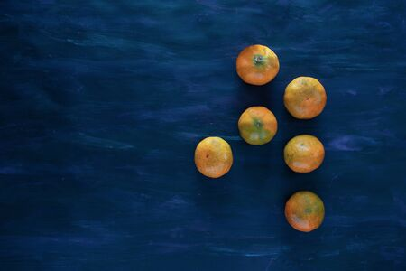 Mandarin Orange Tangerines Fresh Fruit on Hand Painted Canvas