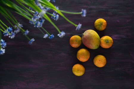 Tangerines and Mango Fresh Fruit on Hand Painted Canvas.