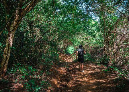 Brunette Man Exploring in Dense Jungle Rainforest. Standard-Bild