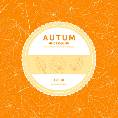 Autumn brochure design, vector background with Leafs. 일러스트