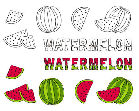 Set of hand drawn watermelon icons. Black and white contours for coloring. Colored watermelons and lettering for summer design and decoration of posters, cards and books. Vector illustration.
