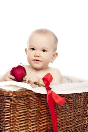 Little boy in basket with red  rose Stock Photo - 6504409