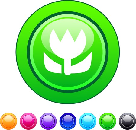Macro glossy circle web buttons.   Vector