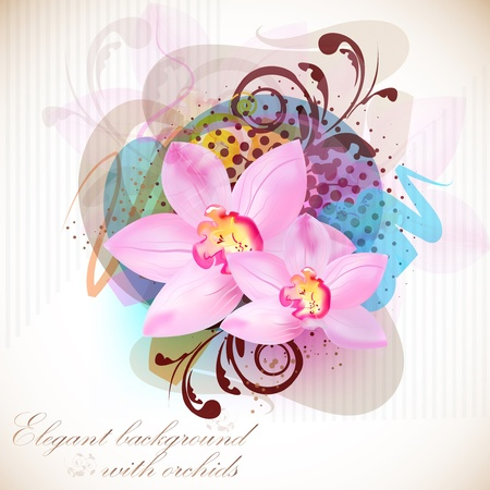 Elegant  composition of orchids. Vintage style  Vector