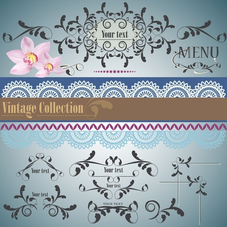 Calligraphic vintage design elements and page decoration. Vector set Stock Vector - 9310010