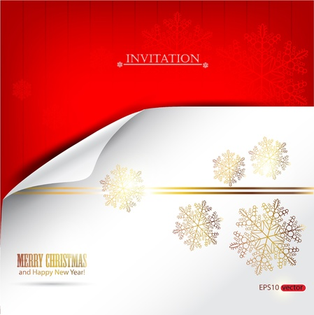 edge of the ice: Elegant winter background with snowflakes and place for text. Vector Illustration.