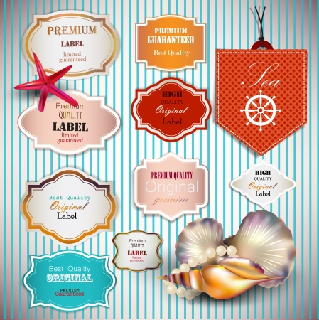 high sea: Set of Superior Quality and Satisfaction Guarantee Badges, Labels, Tags with shells and place for text. Retro vintage style.
