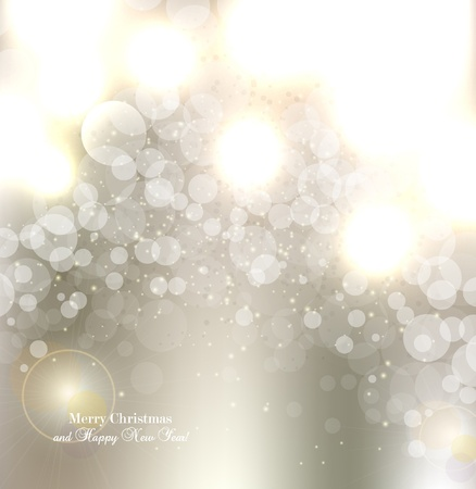 Elegant Christmas background with snowflakes and place for text  Vector Illustration  Stock Vector - 14960292