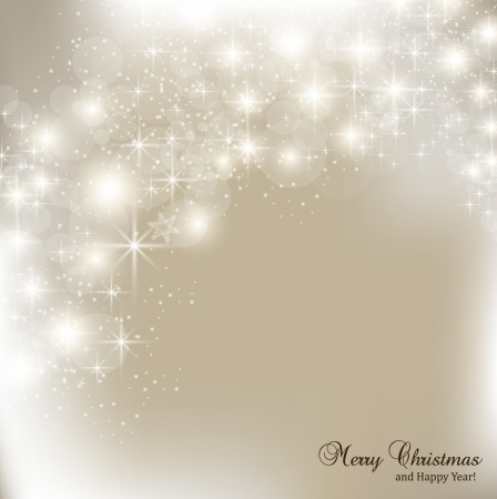 elegant christmas: Elegant Christmas background with snowflakes and place for text  Vector Illustration
