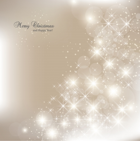 Elegant Christmas background with snowflakes and place for text  Vector Illustration Stock fotó - 16241820