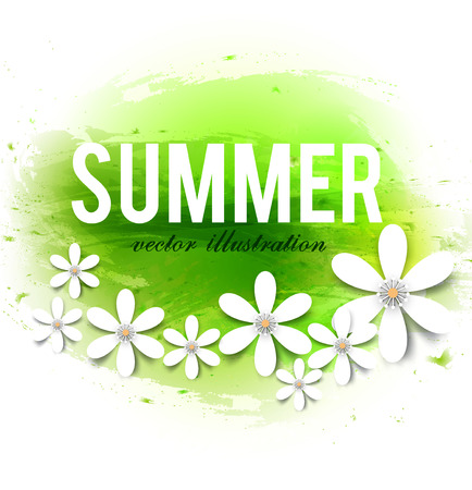 Beautiful summer background with white flowers. Vector illustration
