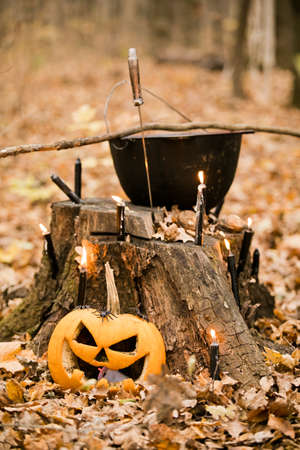 Halloween decorations in the forest: cauldron, pumpkin, candles and dagger