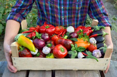 Harvest fresh vegetables in a wooden box in the hands of the farmer close-up. The concept of healthy food. Reklamní fotografie