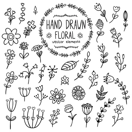 Hand drawn floral elements for your design. Flowers, herbs and leaves in doodle style isolated on white background. Vector illustration