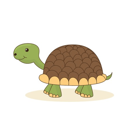turtle isolated: Cute cartoon turtle isolated on white background. Vector illustration