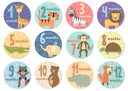 Cute twelve months stickers with animals for babies. Vector illustration