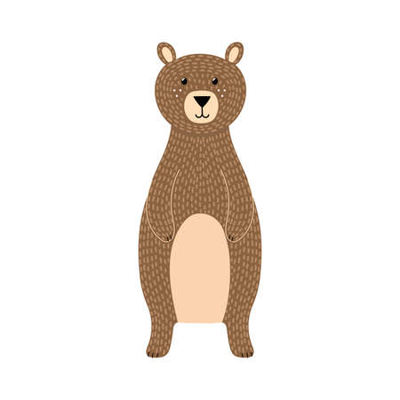 Brown grizzly bear isolated element. Cute forest character Illusztráció