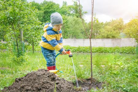 de kleine jongen in de tuin, die de boom water geeft die door bundels van jong boompje van een slang, op een zonnige dag wordt geplant Stockfoto