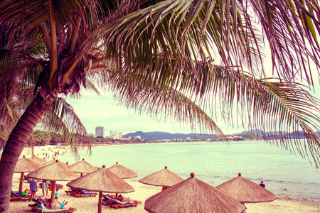 tall, beautiful palm trees hang over the sea, on the shore stand thatched umbrellas, sunny paradise. tropical Asia