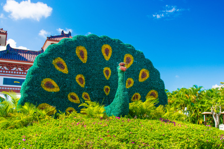 Buddhist Centre in the open air. in the Park of culture and religion. high gate into the Park and beautiful flowerbeds. Sanya.