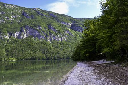 The shore of a mountain lake with trees and a distant rocky shore in sunny weather.