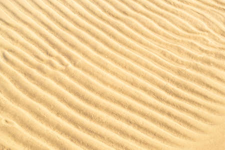 Gold sand texture background. Summer and holiday concept. Sea shore with wavy sand close-up. Top view, copy space. Фото со стока
