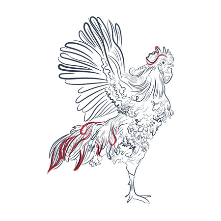 feathery: Rooster in graphic style,  illustration. Isolated chicken bird on a white background Illustration