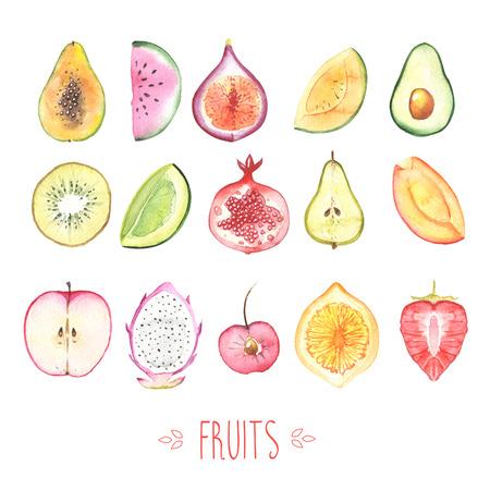 Fruits on white photo